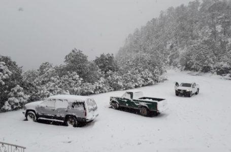 📸📹Durango de blanco por nevadas