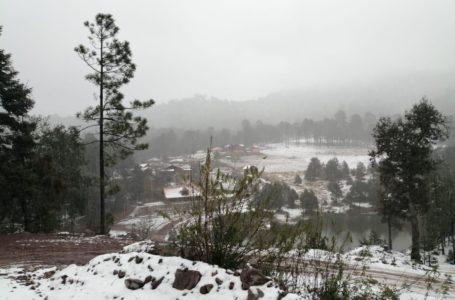 📸Badiraguato, con hermosos paisajes de blanco por nevadas