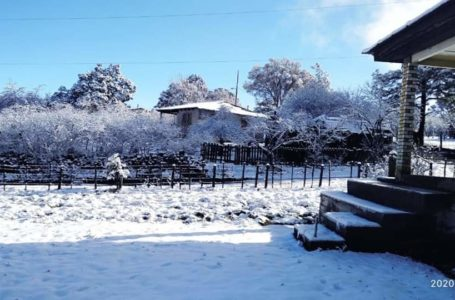 📹📸Así las nevadas en Sonora y Chihuahua