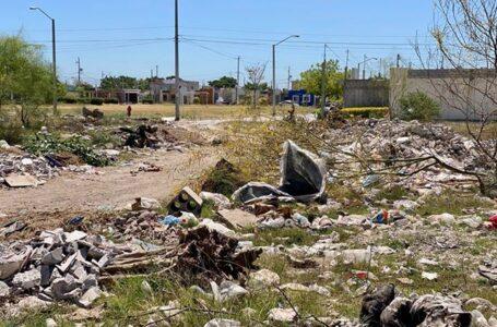 """""""Criadero de moscos y panteón de animales"""", basurero en Prados del Sur, denuncian"""