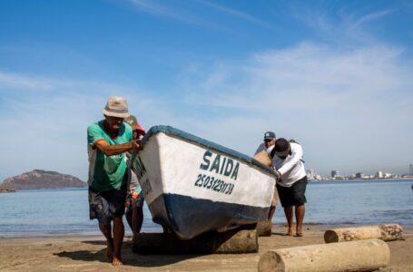Levantarán veda del camarón el 26 de septiembre en el norte de Sinaloa