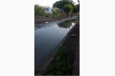 Aguas pestilentes anegan calle en Virreyes