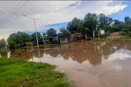 Adolecen de mal estado de calles y drenaje en Higuera de Zaragoza