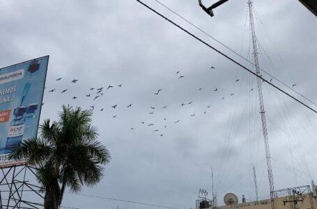 Se prolongarán lluvias hasta este jueves en el norte de Sinaloa