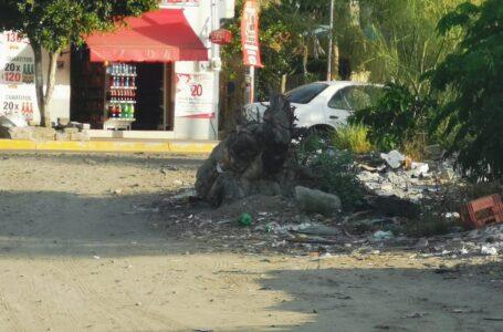 """Urgen apoyo en limpieza y descacharrización en Topolobampo """"hay 10 toneladas de basura"""""""