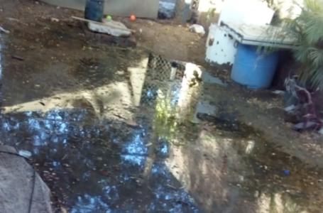 Brotan aguas negras en varios sectores de Los Mochis